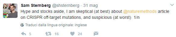 sternberg 1