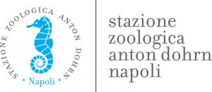 logo-SZN-2-300x131