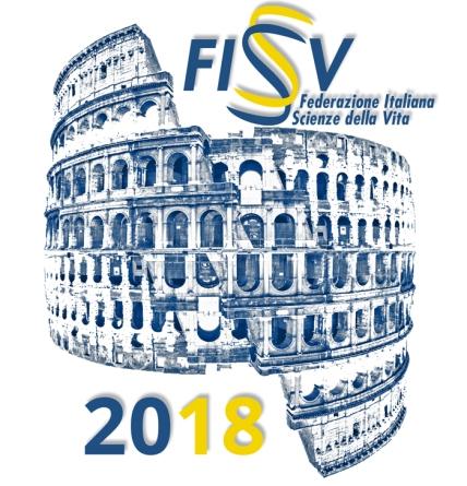 FISV2018