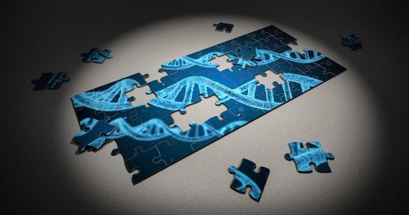 puzzle-2500333_1280