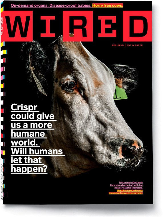 Wired cover April 2019